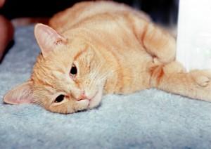 Jerome sprawled out